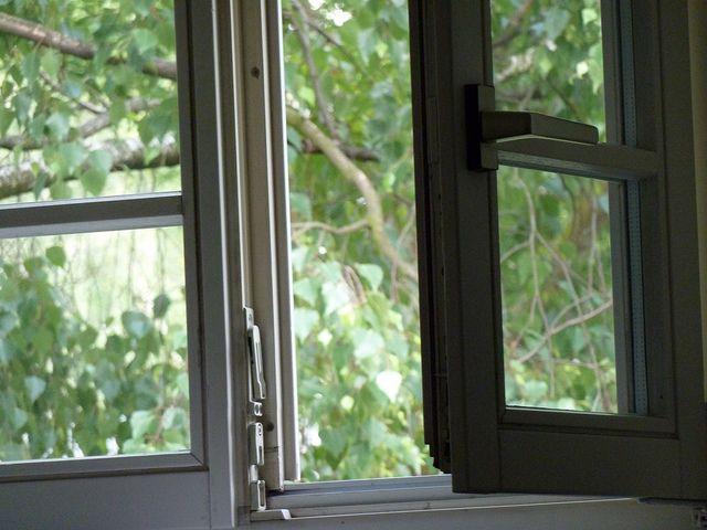 Franz huainigg franz joseph huainigg for Fenster joseph